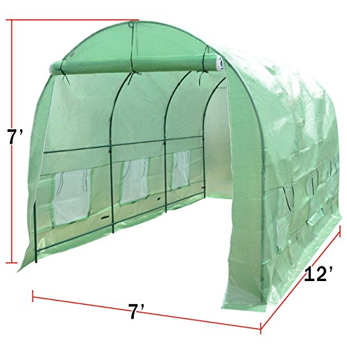 Strong Camel New Hot Green House 12'X7'X7' Larger Walk in Outdoor Plant Gardening Greenhouse by Strong Camel (Image #8)