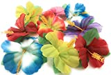 Hibiscus Flowers for Tabletop Decoration ( Pack of 72 ) by Oojami