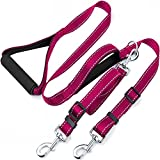 Taglory Dual Dog Leash for Two Dogs/Basic 6 Ft Dog Training Walking Leash with 2 Padded Handles/Double Dog Leash for 2 Dogs/Fuchsia