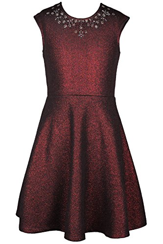 Truly Me, Big Girls' Sleeveless Special Occasion Skater Dress in Novelty Fabrication with Flower Stonework, Size 7-16 (Wine, 16)