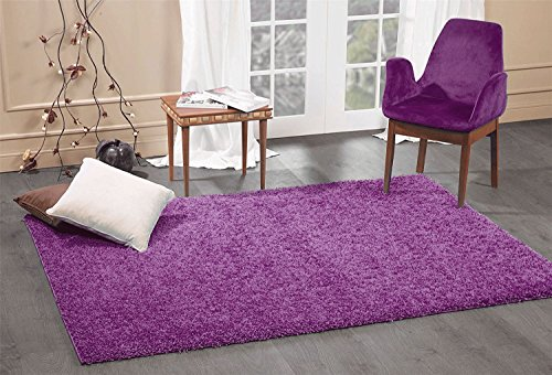 A2Z Rug Cozy Shaggy Collection 3x5-Feet Solid Area Rug - Eggplant Purple ()