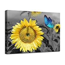 """Canvas Wall Art Sunflower Blue Butterfly Yellow Flowers Pictures Black and White Painting Prints Framed Artwork for Bedroom Kitchen Dinning Room Living Room Office Home Decor- 16""""X12"""", One Panel, Gallery Wrapped"""
