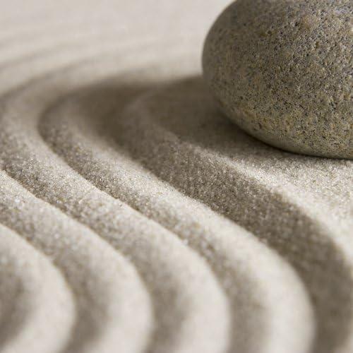 15 W maximum 110 W Beige IMETEC Relaxy SHP-01 Coussin chauffant /à sable