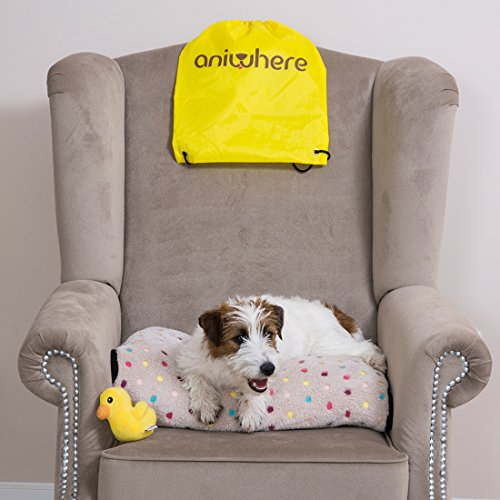 Aniwhere - Dog Blanket - Cat Throw - 2 Blankets in 1 Mod - Travel Kit Drawstring Backpack Pet Plush Toy - Perfect to Snuggle Keep Warm - Cuddle Pouch Wrap Mod-Ebook (Large/Medium) by Aniwhere (Image #1)