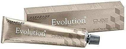 Alfaparf Evolution Tinte Capilar, Tono 9.1 - 60 ml: Amazon.es ...