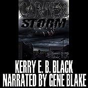 Car Nex: Storm: The Car Nex Story Series, Book 3 | Kerry E.B. Black