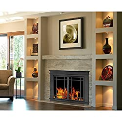 Pleasant Hearth Fillmore Glass Firescreen by GHP Group, Inc