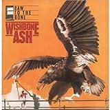 Raw to the bone (1984) / Vinyl record [Vinyl-LP]