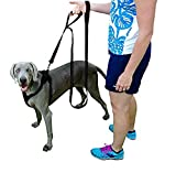 Q Global Dog Leash - Pet Supplies for Dogs Leashes - Dog Leash 2 Handles - 1 Leash 2 Handles - Dog Training Leash - Extra Strong Large Dogs