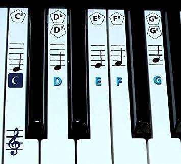 FineFun Notas adheribles para teclas de piano y teclado. Pegatinas para notas para aprendizaje de piano, etiqueta de vinilo (negro)., azul
