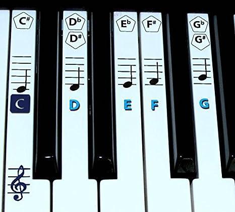 FineFun Notas adheribles para teclas de piano y teclado. Pegatinas para notas para aprendizaje de piano, etiqueta de vinilo (negro)., azul: Amazon.es: ...