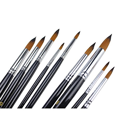 Brushes Homegarden Watercolor Painting Supplies product image