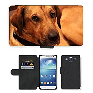 Super Stella Cell Phone Card Slot PU Leather Wallet Case // M00106713 Hound Dog Sweet Pup Puppy Fur // Samsung Galaxy S3 S III SIII i9300