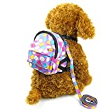 Alfie Pet by Petoga Couture - Halle Backpack Harness with Leash Set - Color: Purple, Size: Small
