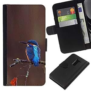 All Phone Most Case / Oferta Especial Cáscara Funda de cuero Monedero Cubierta de proteccion Caso / Wallet Case for LG G2 D800 // rama marrón azul tropical del pájaro cantante