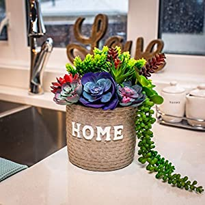 Creative Side Artificial Succulent Plants - 11 Soft Realistic Lifelike - Colorful Faux Succulents Arrangement, Mini Fake Succulent Plants, Large Succulents Unpotted Plant For Planters And Indoor Decor 5