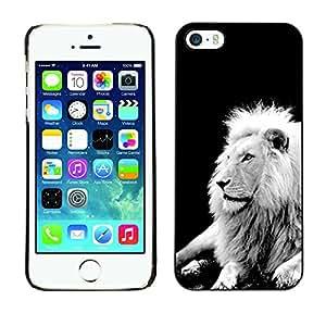 Qstar Arte & diseño plástico duro Fundas Cover Cubre Hard Case Cover para Apple iPhone 5 / iPhone 5S ( Lion Black White Mane Majestic Creature)