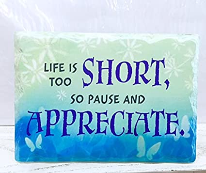 buy archies life is too short so pause and appreciate quotation