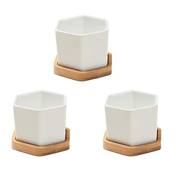 Bestomz 3 Satze Kleine Weisse Keramik Hexagonal Sukkulenten Container