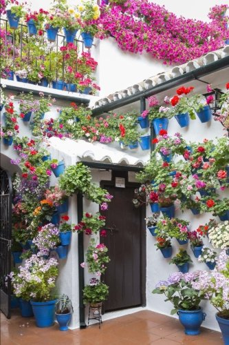 Cheap  A Lovely Patio Brimming with Flower Pots on the Walls and the..