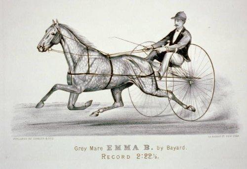 Photo: Grey mare Emma B. by Bayard,Harness Racing,1856-1907,Currier & Ives Photo (Bayards Chocolate)