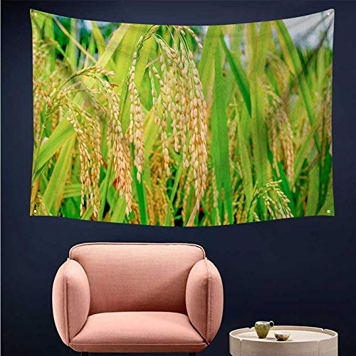 (alsohome Tapestry for Bedroom Cool Wall Tapestry The Late Summer Harvest of Rice)