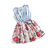 Baby Girl Tutu Denim Dress Short Sleeve Lace Princess Party Skirts (Blue, 3-4Y)