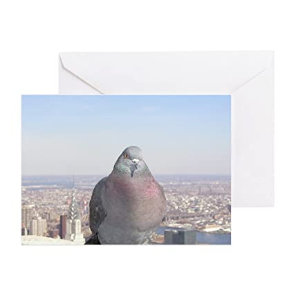 Amazon Cafepress Pigeon On Skyscraper Greeting Card Note
