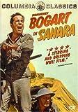 Buy Sahara