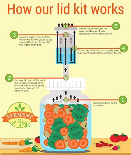 Ferment N' Joy Fermentation Lids with Airlocks: Fit Wide Mouth Mason Jars (2)