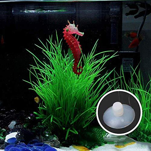 Petilleur - Adorno Luminoso de Caballito de mar para decoración de Acuario de Peces, 3 Unidades: Amazon.es: Productos para mascotas