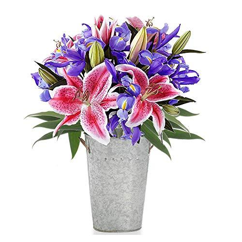 Stargazer Barn - The Star Dreamer Bouquet with Vase - Farm Fresh Stargazer Lilies and Telstar Iris, Pink, Blue, Purple, 3 Stargazers 10 Iris