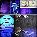 UV Black Light Flashlight, Super Bright LED #1 Best Pet Dog Cat Urine Detector light Flashlight for Pet Urine Stains, UV Blacklight Flashlight with UV Sunglasses for Bed Bugs Scorpions