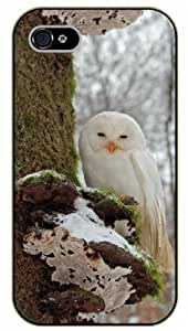 iPhone 4 / 4s White owl - black plastic case / Animals and Nature, owl, owls