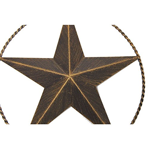 12 INCHES LONESTAR WITH TWISTED ROPE RING BARN STAR METAL WALL ART WESTERN HOME DECOR