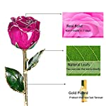 Icreer-24k-Gold-Dipped-Real-Rose-Free-Crystal-StandPresent-for-Mothers-Day-Valentines-Day-Anniversary-Birthday-WeddingGifts-for-Her-Mom-Wife-Girlfriend-Dark-Pink
