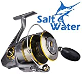Fishing Reels Saltwater Spinning Reel for Inshore Surf Casting | Ocean Deep Sea Boat Heavy-duty Jigging or Ultralight Kayak Bass Fishing Gear in Freshwater Pair with an Offshore Fishing Rod Combo 8000