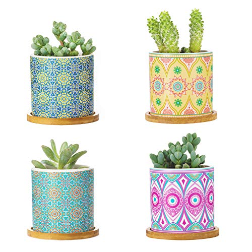 PotHouse Succulent Plant Pots – 3 Inch Cylindrical Bohemian Mandalas Ceramic Planter for Cactus, Succulent Planting, with Drainage Hole, Bamboo Trays, Set of 4-Type D