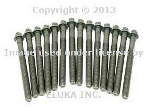 BMW OEM Engine Cylinder Head Bolt Set for 525i 528i 530i 320i 323Ci 323i 325Ci 325i 325xi 328Ci 328i 330Ci 330i 330xi X5 3.0i 525i 530i X3 2.5i X3 3.0i Z4 2.5i Z4 3.0i Z3 2.5 Z3 2.5i Z3 2.8 Z3 3.0i