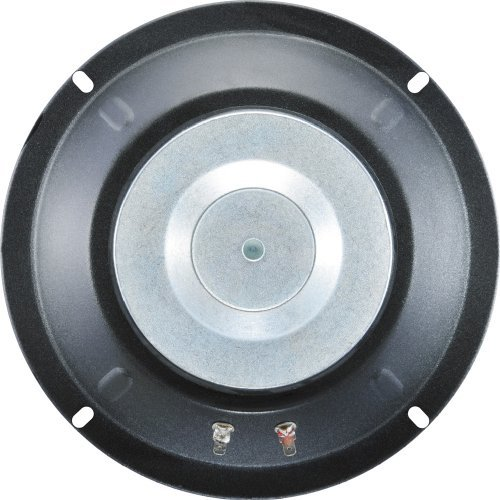 100 Watt Raw Frame Speaker - 3