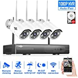 HisEEu 4-Channel HD 1080P Wireless IP Security Camera System(IP Wireless WIFI NVR Kits),4Pcs 1080P 2.0 Megapixel Wireless Indoor/Outdoor IR Bullet IP Cameras,P2P,App, HDMI Cord & 1TB HDD