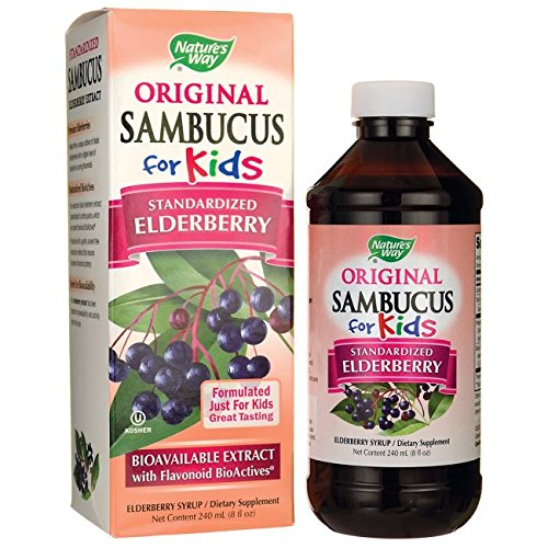 NATURE'S WAY, Sambucus For Kids – 4 fl oz For Sale