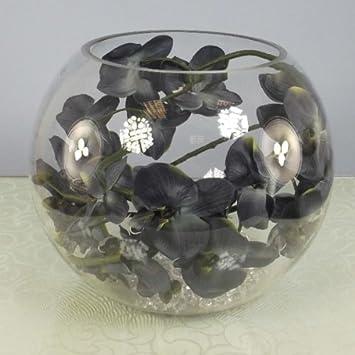 Con arreglo floral decoraciones - orquídea de polilla en 35 cm pecera - crema: Amazon.es: Hogar