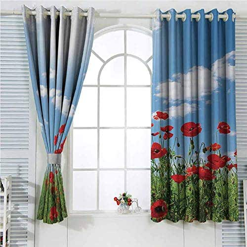 Poppy Decor Collection Room Darkening Curtains for Bedroom Red Poppies on Green Field Grassy Sunshine Rays Wild Plants Herbs Botany Image Bedroom Decor Blackout Shades W72 x L107 Inch Blue Red Green
