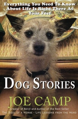 Download Dog Stories: Everything You Need To Know About Life Is Right There At Your Feet PDF