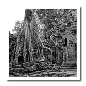 ht_179876_3 KIKE CALVO Asian Cambodia Angkor Wat and Buddhist Collection - Black, White Theravada Buddhist Phras Ang Tep Monastery sitting under tree - Iron on Heat Transfers - 10x10 Iron on Heat Transfer for White Material