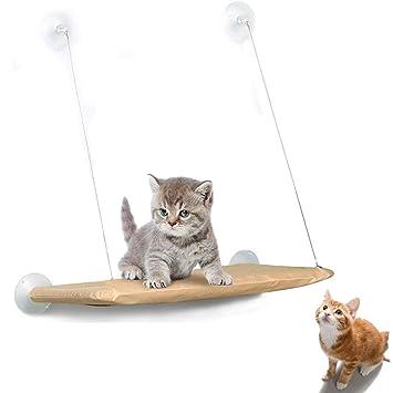 Amazon.com: Aya-CHIC - Hamaca para gato o gato, con ventosa ...