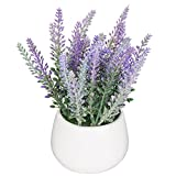 Planta de maceta artificial de cerámica de mesa de jardín blanco / flores de lavanda falsas decorativas modernas - MyGift®
