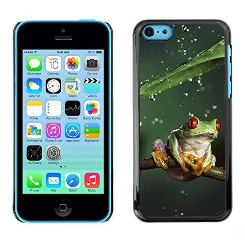 Omega Case PC Polycarbonate Cas Coque Drapeau - Apple iPhone 5C ( Cool Jungle Frog & Rain )