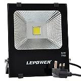 LEPOWER 50W LED Floodlight, Super Bright Outdoor Work Lights, 250W Halogen Bulbs Equivalent, IP66 Waterproof Outdoor Floodlight, 6500K, 4500lm (Daylight White)
